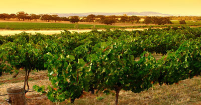 Agrotourismus in der Toskana